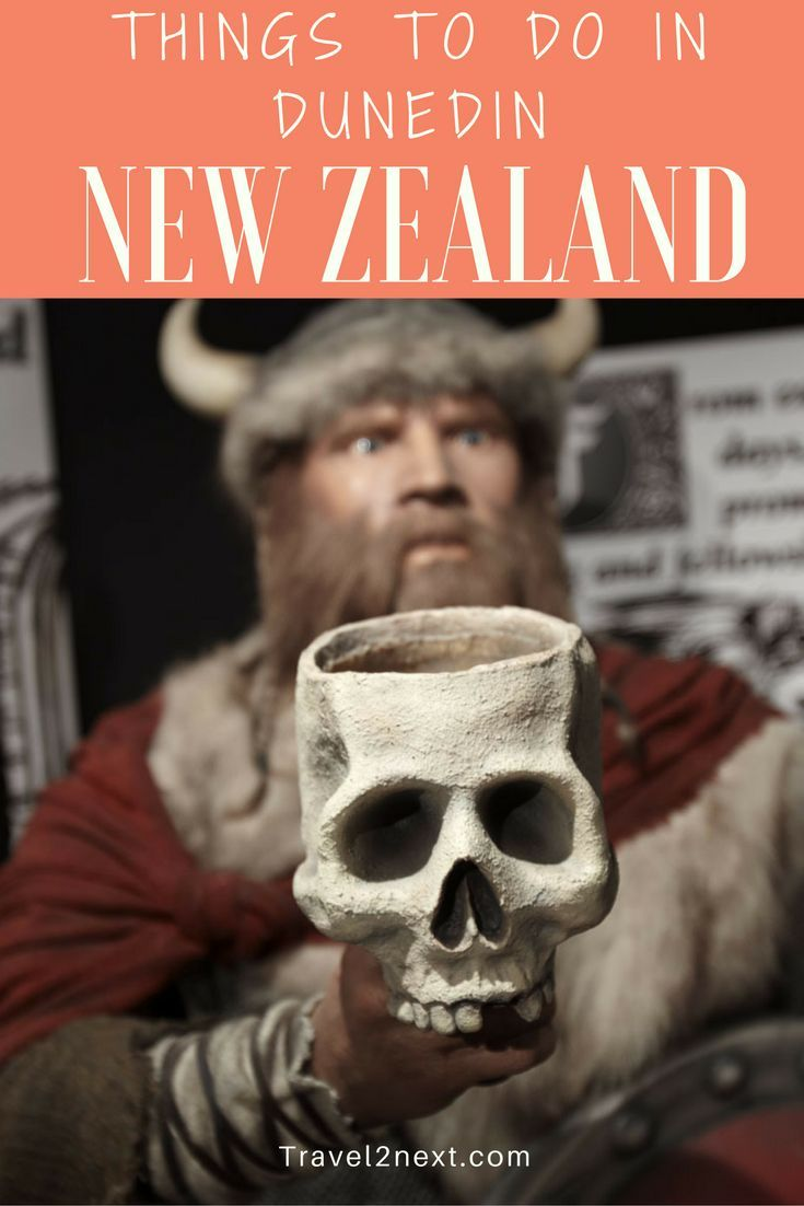 Things to do in Dunedin New Zealand. More than a whiff of Scottish heritage hangs in the cool Dunedin air.
