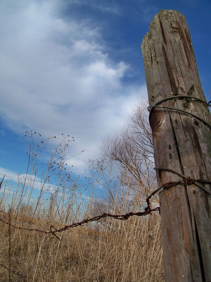 Rustic Barb Wire Fence Post Post And Wire Old Fences