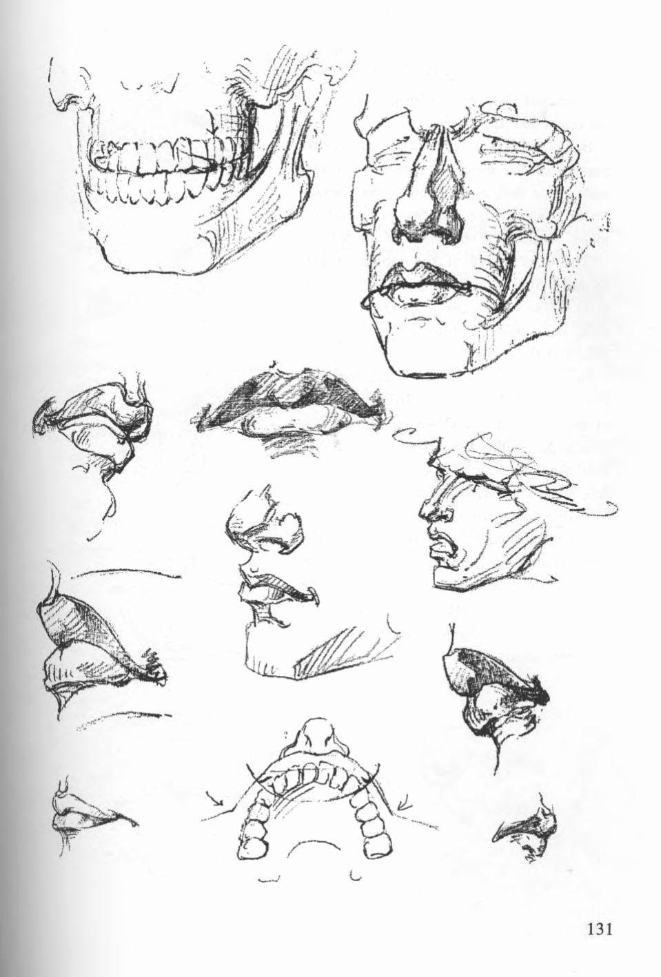 Bridgman Figure Drawing Book in 2020 | Figure drawing ...