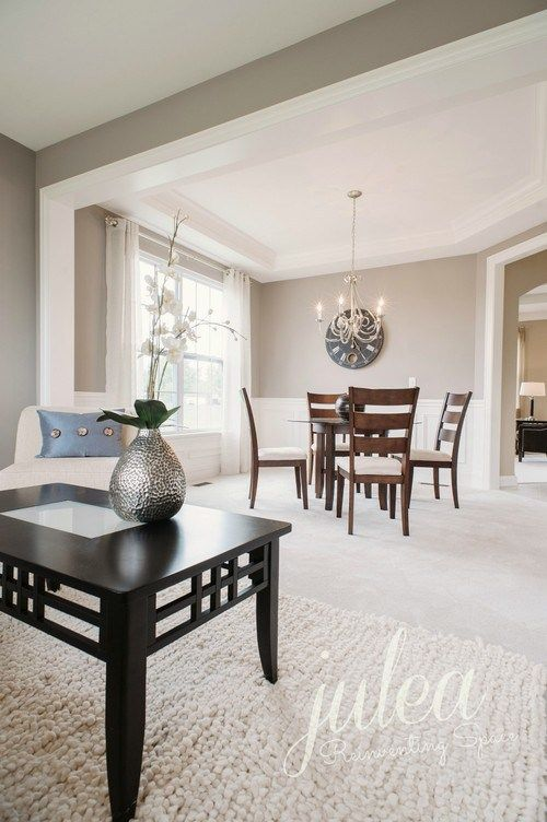 Sherwin Williams Repose Gray Is A Light Warm Paint Colour That Not Quite Greige Photo Via Julea Reinventing E