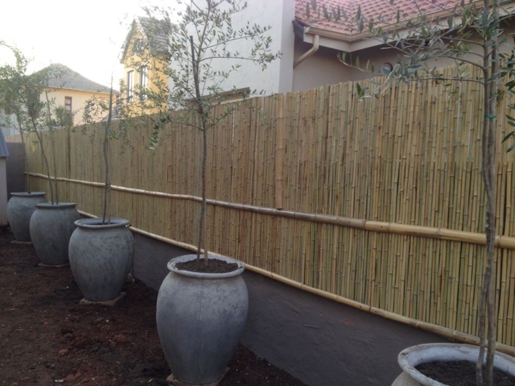 natural bamboo wall extension done with split bamboo poles for