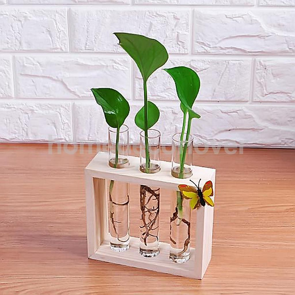 Crystal glass test tube vase in wooden stand flower pots for crystal glass test tube vase in wooden stand flower pots for hydroponic plants home garden decoration reviewsmspy