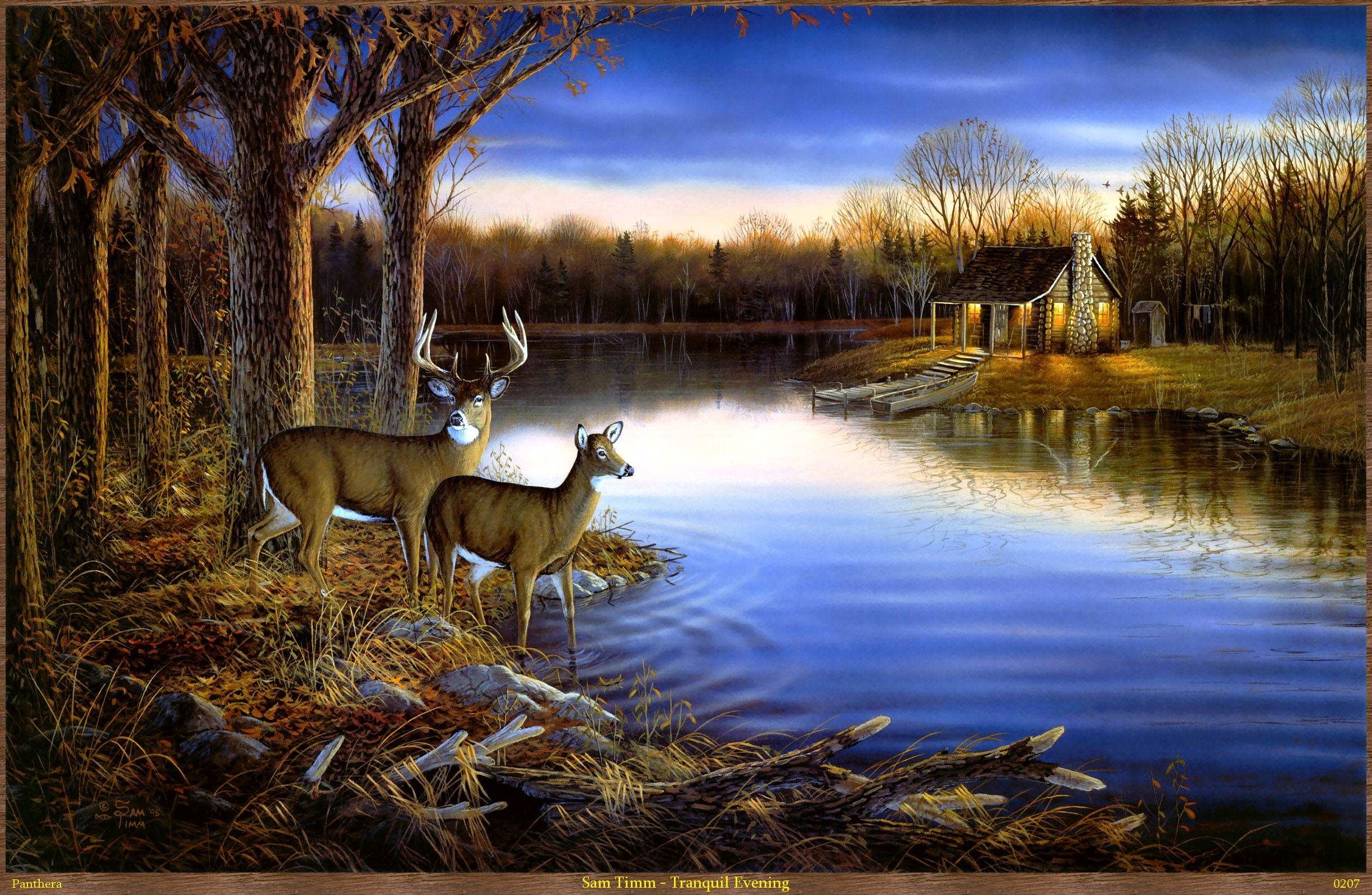 sunset photo with deer in them - Google Search