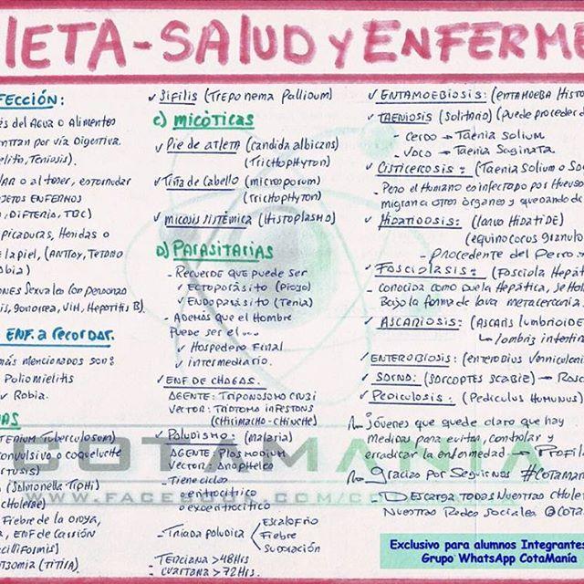 Chuleta de salud y enfermedad cotamania hacemos la biologa ms chuleta de salud y enfermedad cotamania hacemos la biologa ms fcil nv urtaz Images