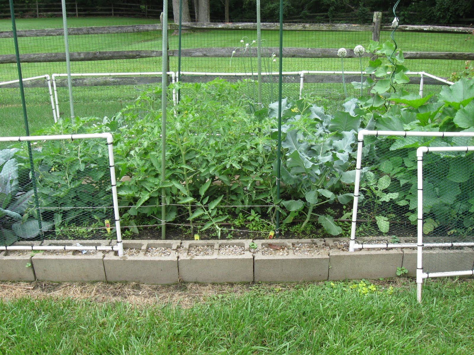 17 Diy Garden Fence Ideas To Keep Your Plants Fenced Vegetable