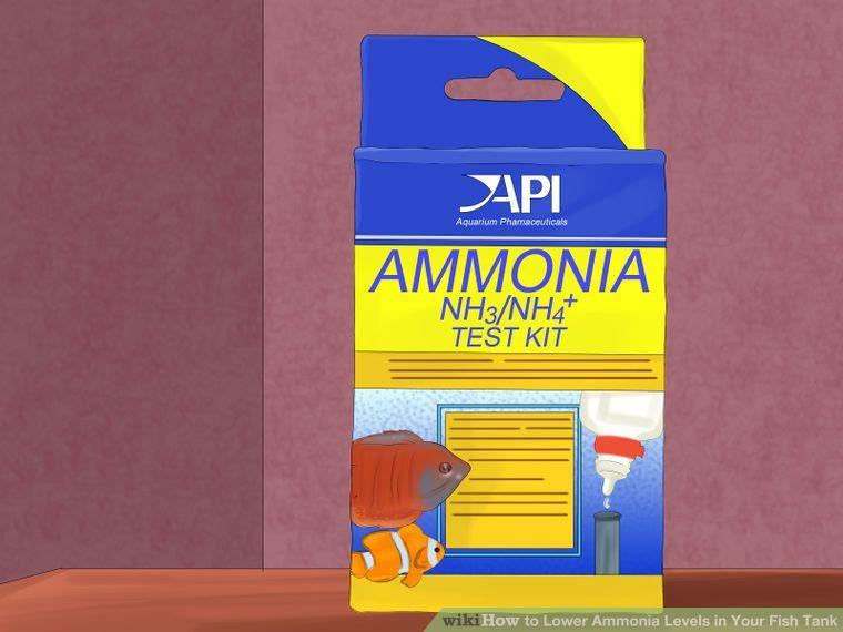 6f94ae6da5dc513c895b65ea4df122e7 - How To Get Ammonia Out Of My Fish Tank