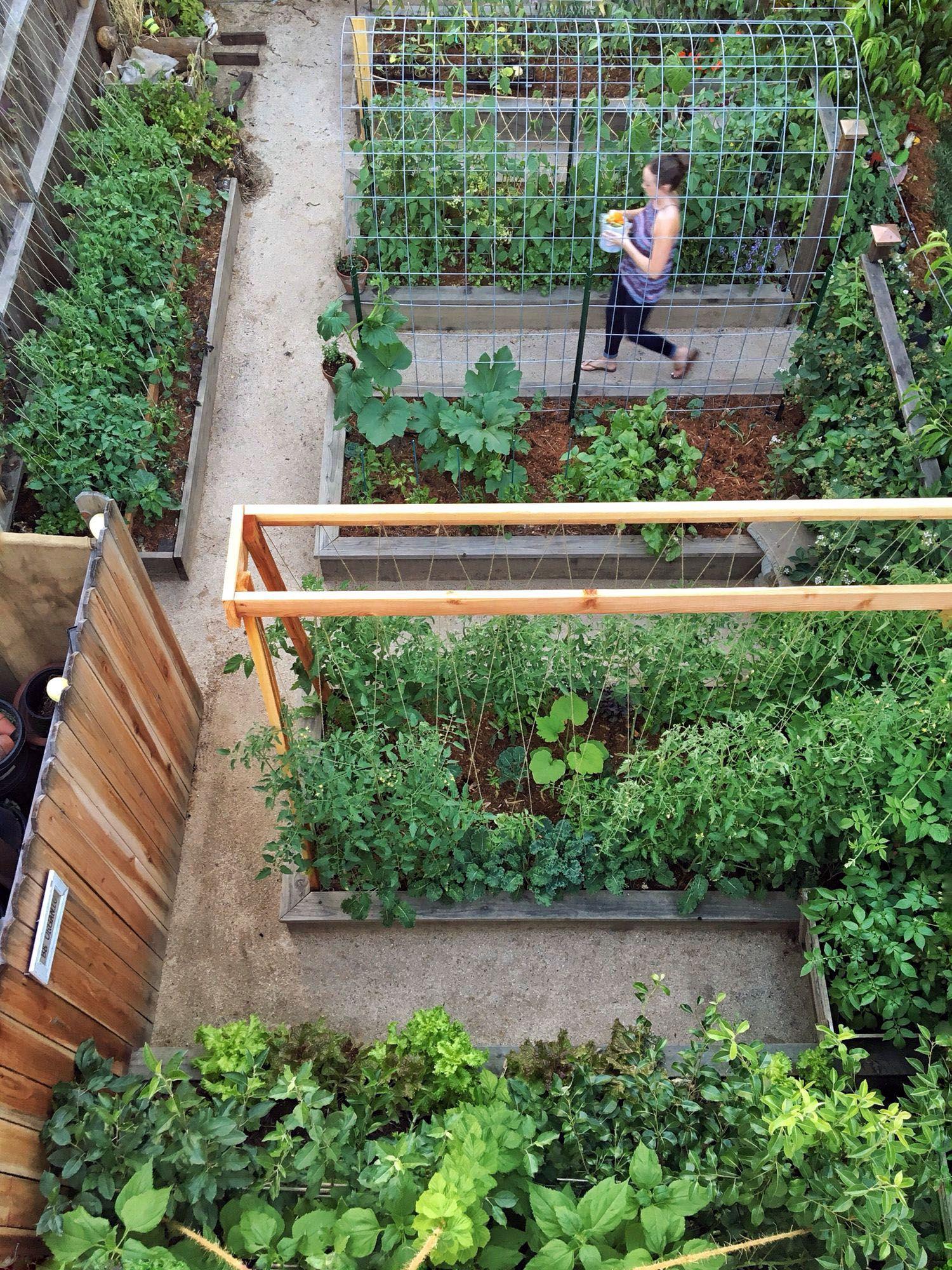 10 Lifted Garden Landscape Design Tips Vegetable garden