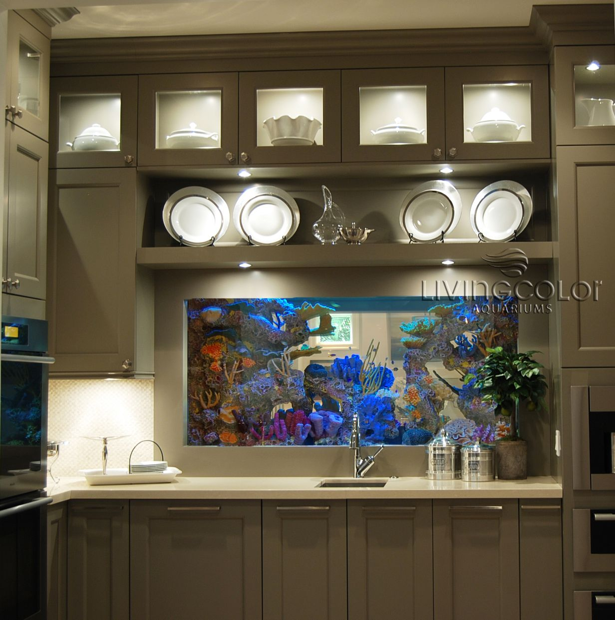 Fish aquarium dimensions - Double View Custom Aquarium Dimensions 60 X 24 X 42 H 350
