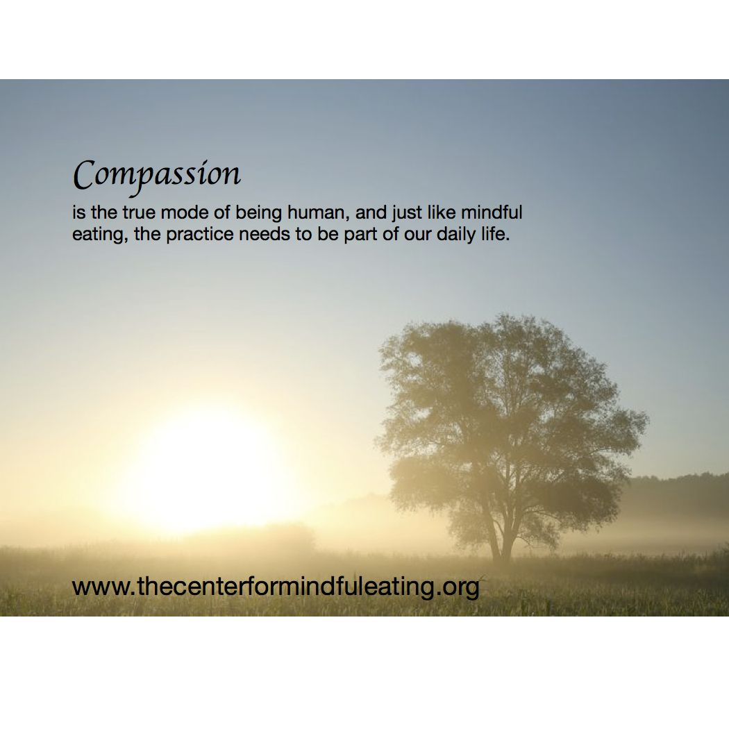 Quotes About Compassion 6
