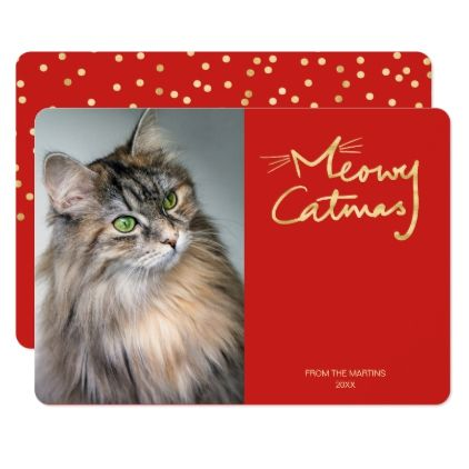 Meowy Catmas Funny Cat Photo Christmas Card Zazzle Com Funny Cat Photos Christmas Photo Cards Diy Christmas Photo