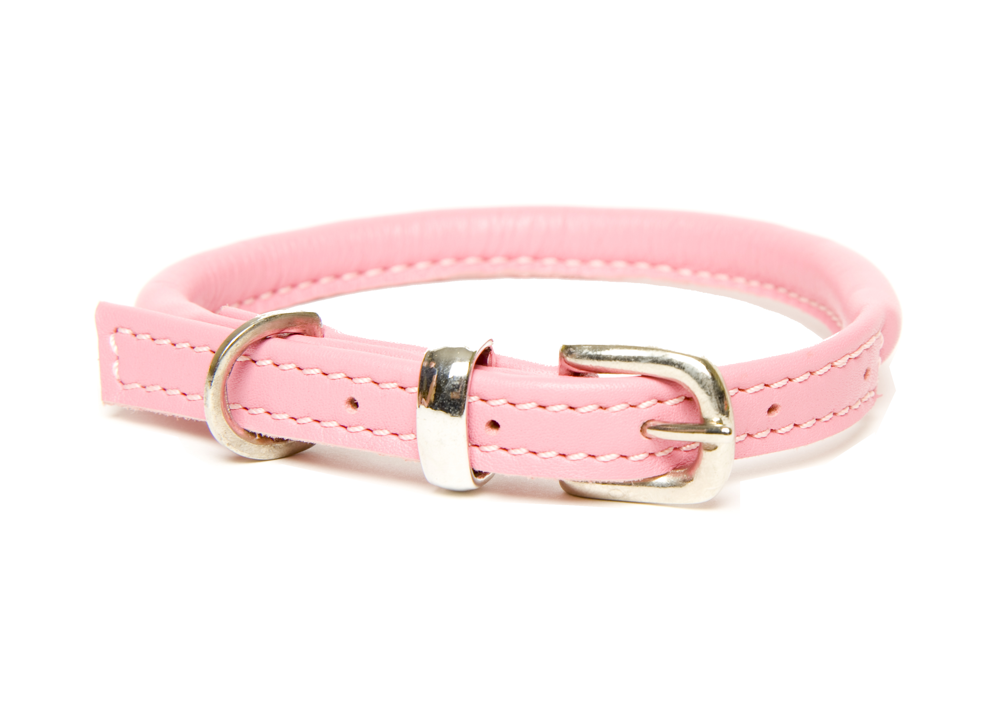 Top Collars For Cavalier King Charles Spaniels Chelsea Dogs Blog Pink Dog Collars Rolled Leather Collar Luxury Dog Collars