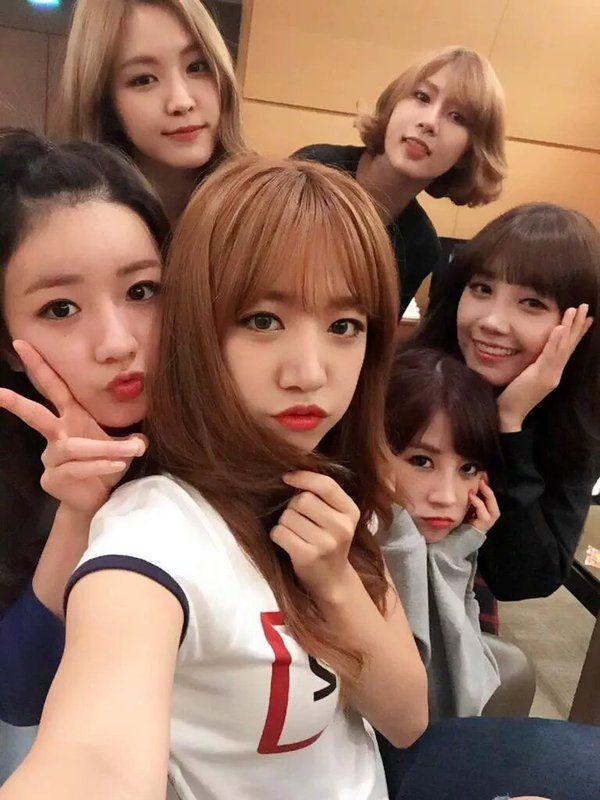 Apink5thanniversary Hashtag On Twitter Kpop Girl Groups Korean Girl Band Kpop Girls