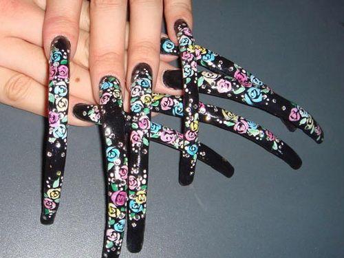 Crazy Nail Designs: Very Long Nails Designs ~ Nail Art Inspiration ...