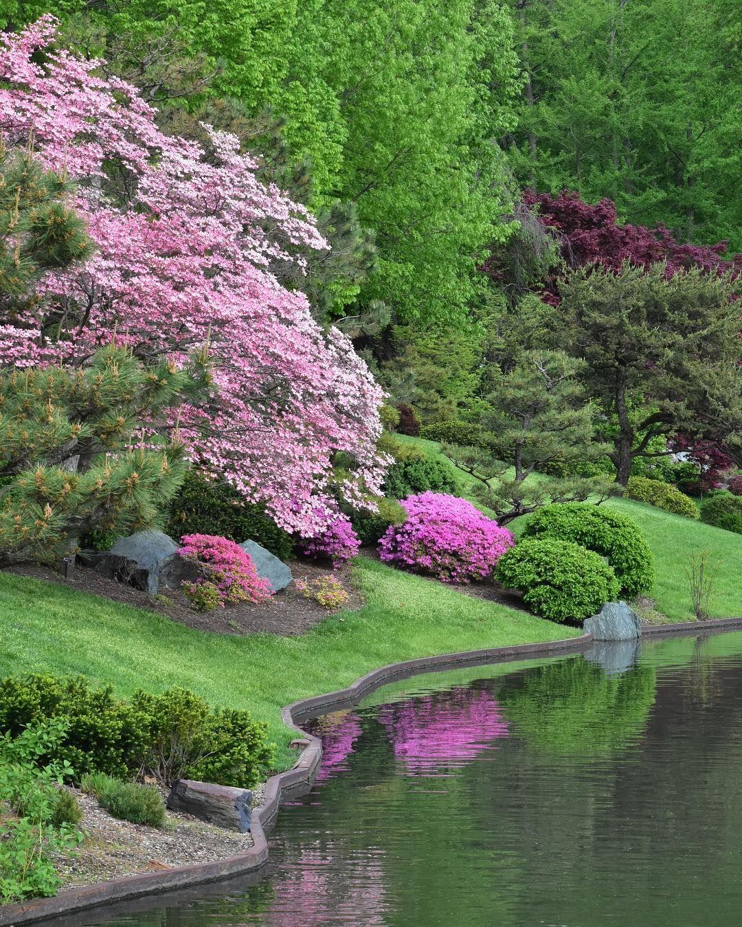 6f983b7bcd1fb1b9cdce065e947d8cfe - Best Time To Visit Missouri Botanical Gardens