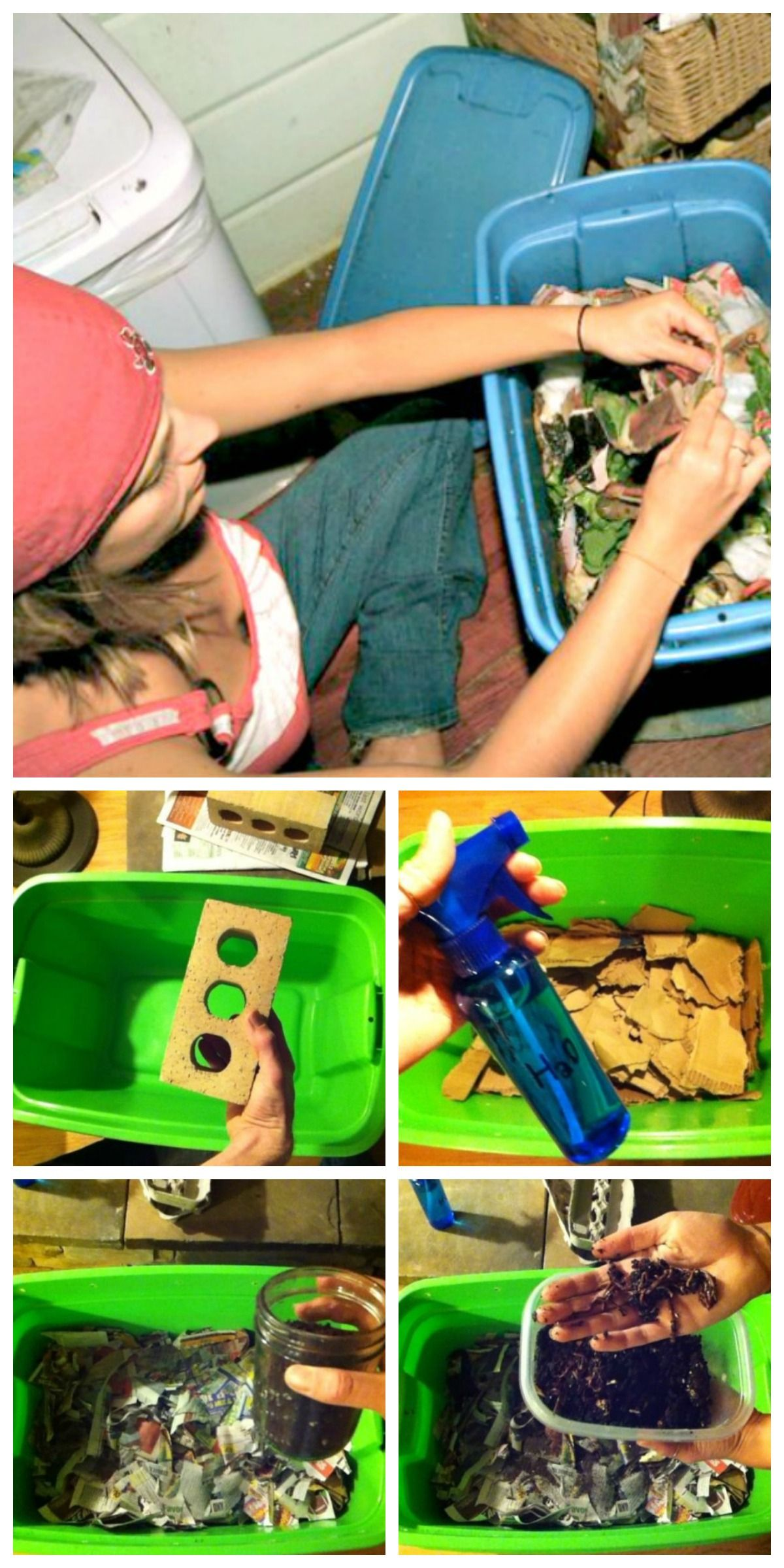 Build a worm bin for less than 30 kitchen compost bin