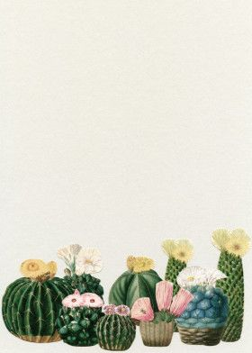 Cactus Garden | Displate thumbnail