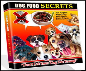 8 Best Hypoallergenic Dog Food Brands And Products For Your Dog S