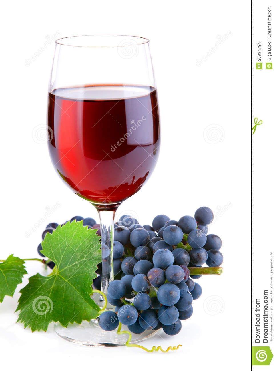 Wine Glass Grapes Google Search Grapes Wine Goblets Wine