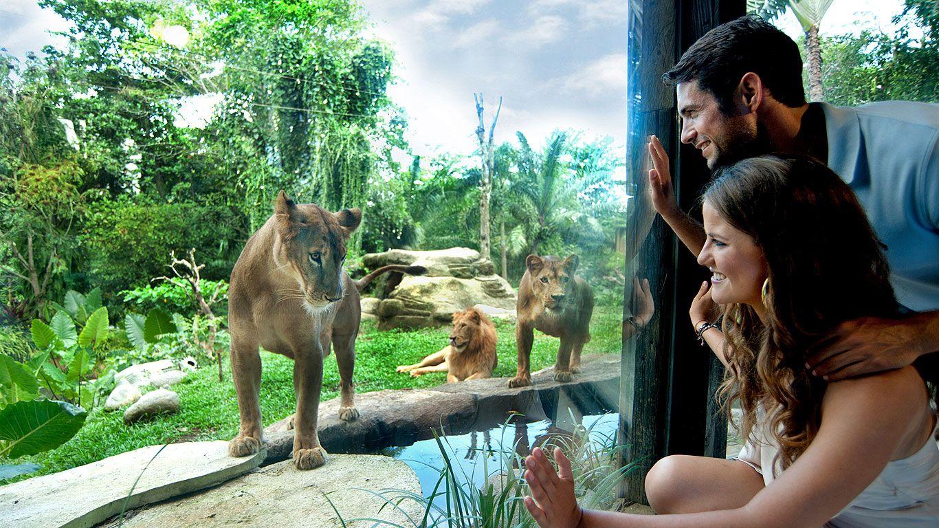 Kebun Binatang Di Ubud Bali