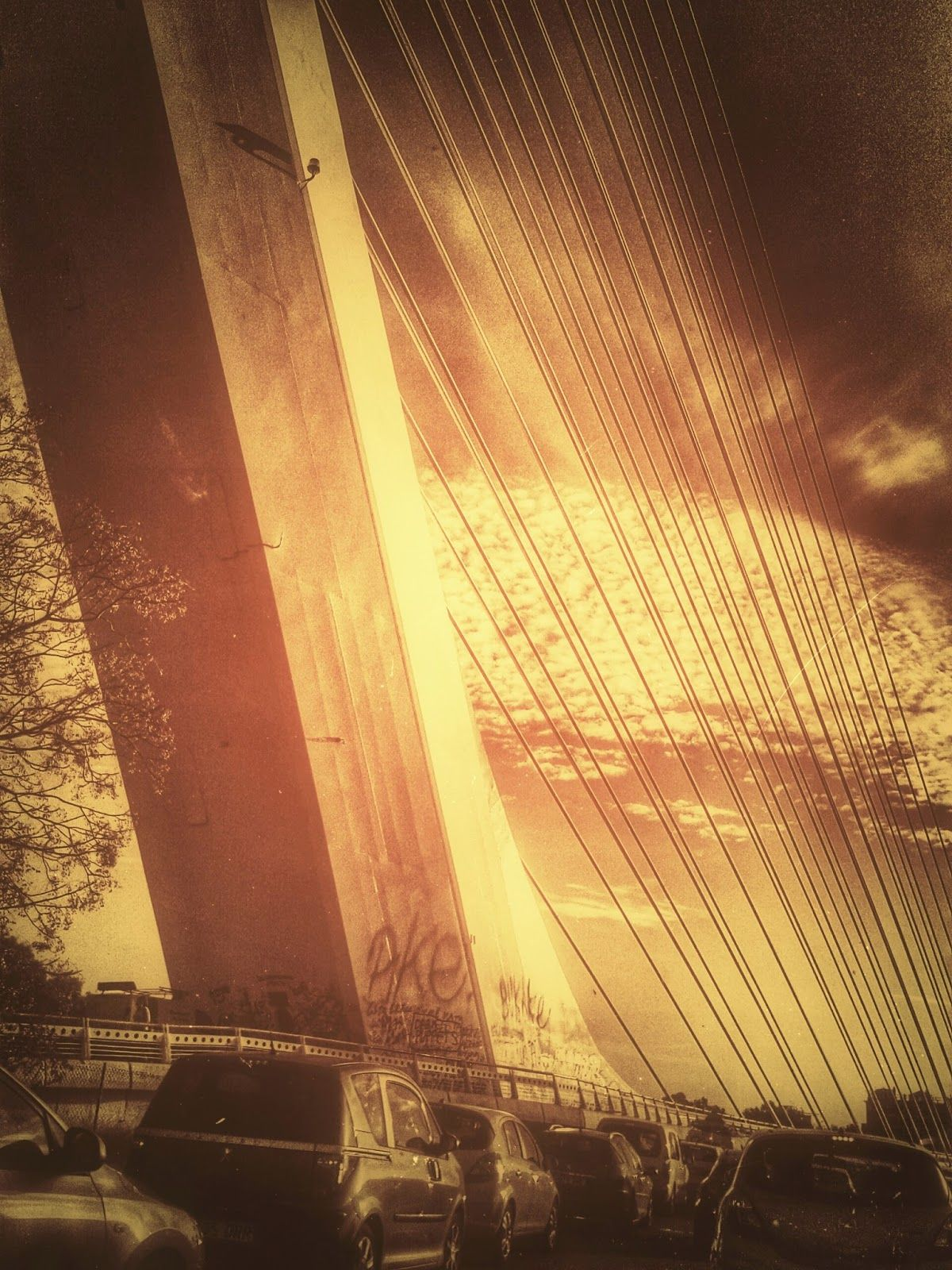 Meridiana claridad (Sofía Serra): Golden Gate de mi averno