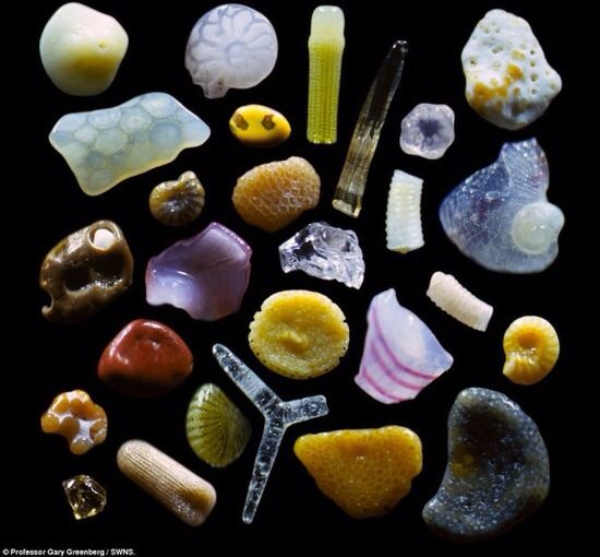 Sand. Magnified 250x