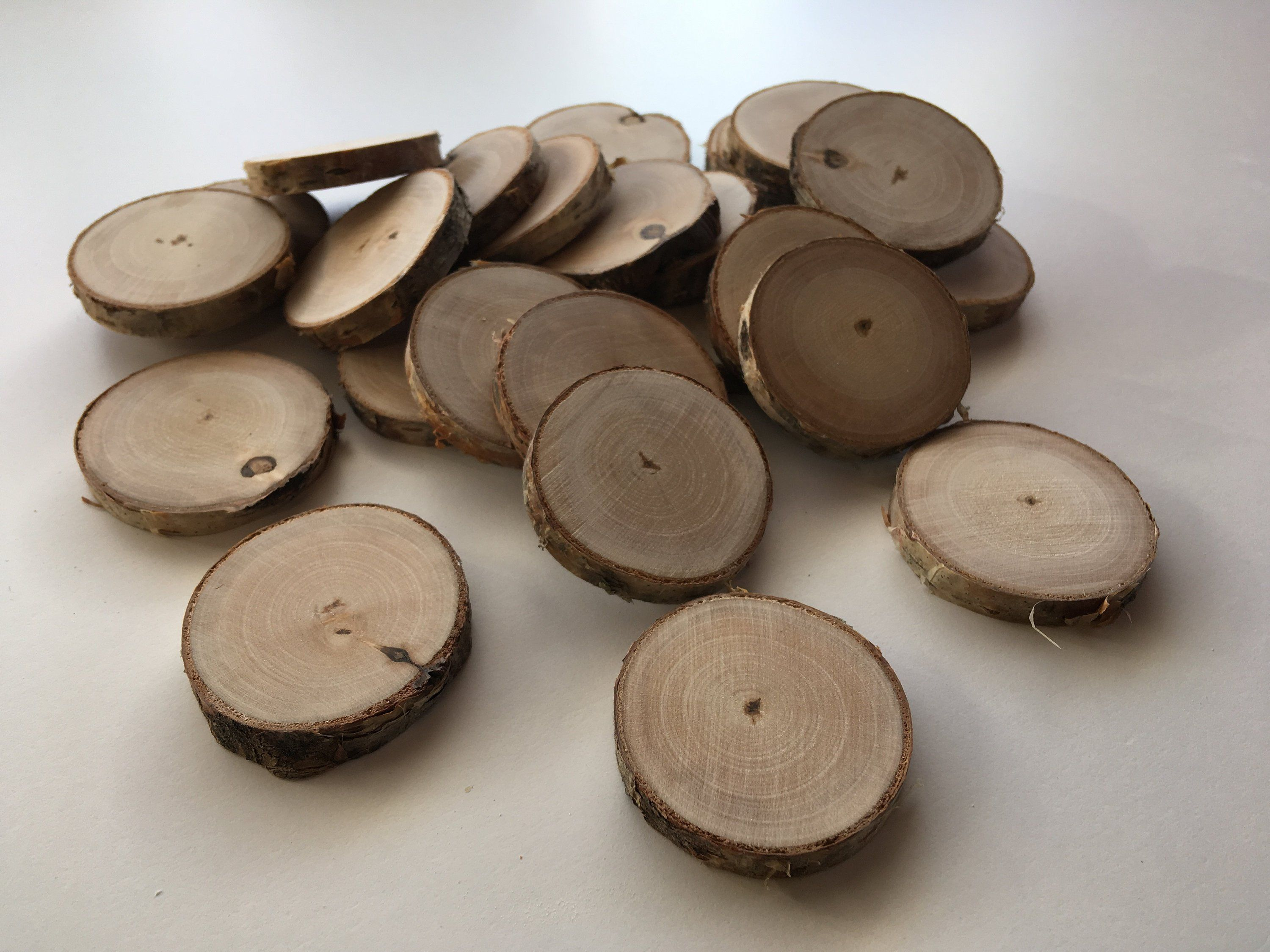 Set Of 40 Rustic Birch Rounds Wood Rounds Tree Slices