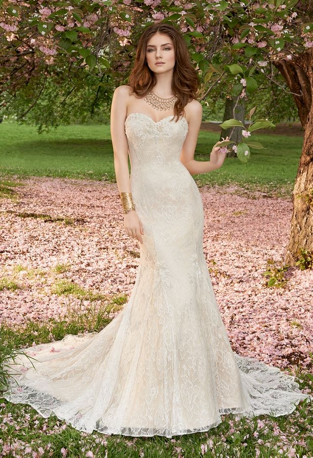 Strapless Lace Wedding Dress with Chapel Train from Camille La Vie ...