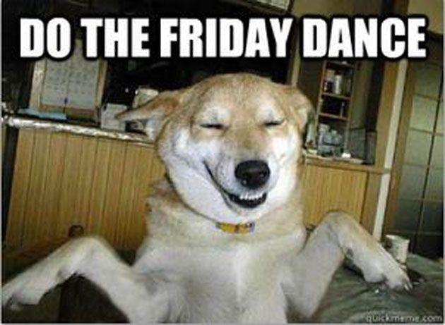 Funny Friday Dog Meme : Do the friday dance funny memes pinterest