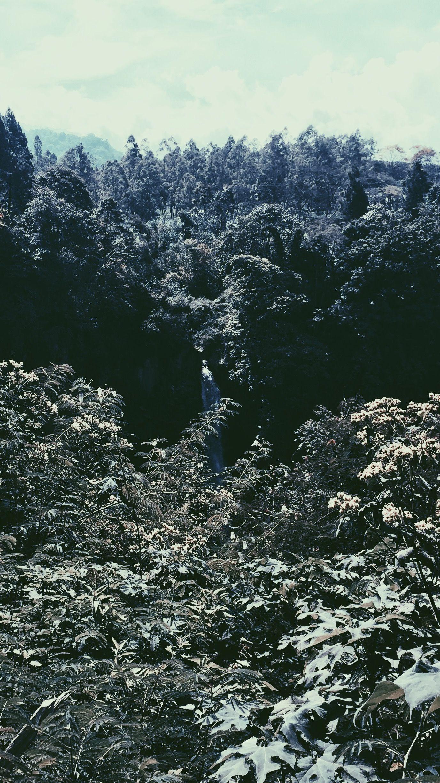 Waterfall di 2020 Indonesia