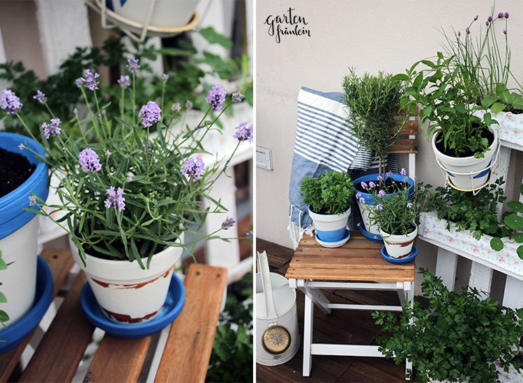 Awesome Gardening On A Balcony