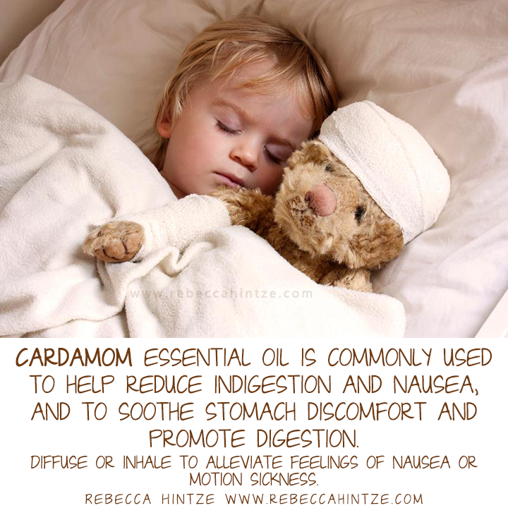 Cardamom Essential Oil Is Commonly Used To Help Reduce