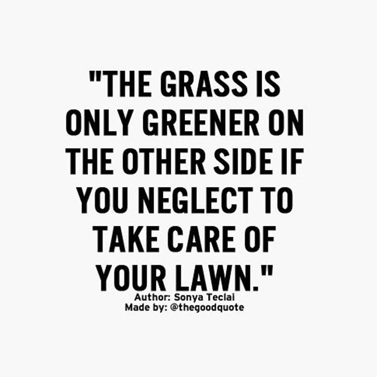 Be grateful for what you have. Take care of it, nurture it