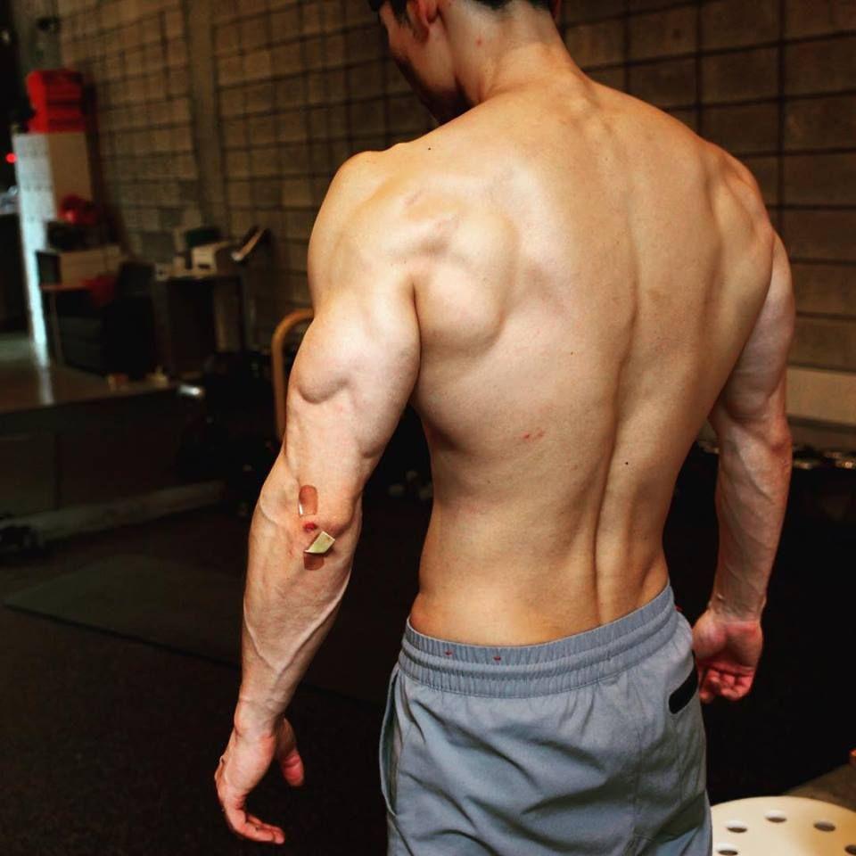 Pin de Br0lit0 en Anatomy Reference | Pinterest | Anatomía, Anatomía ...