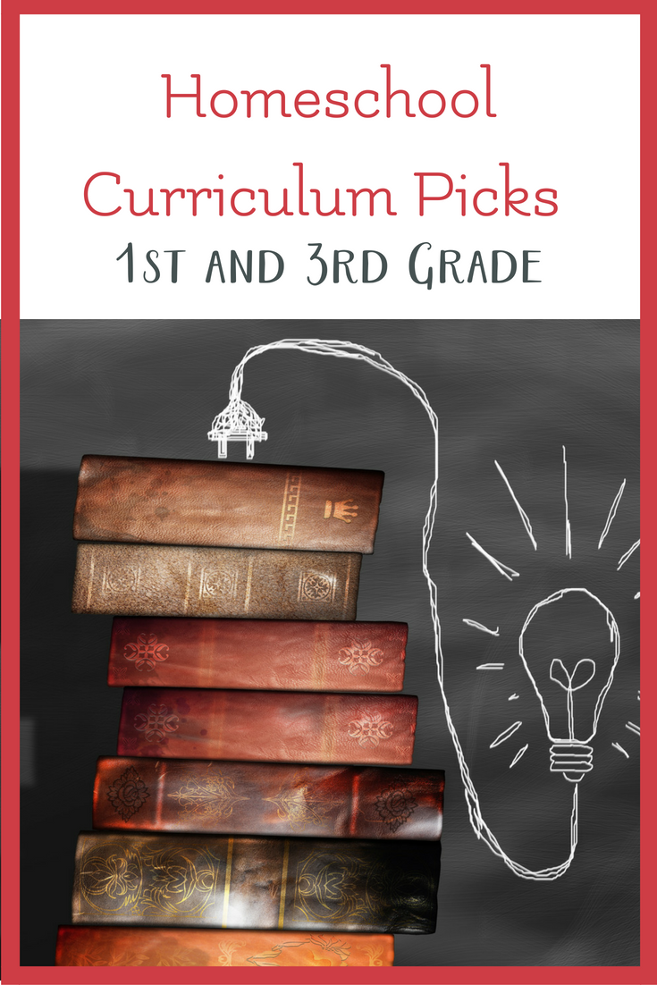 Homeschool Curriculum Picks For 1st And 3rd Grade The Best Of