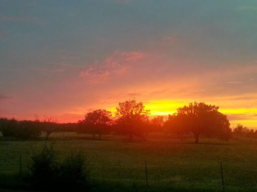 Beautiful Oklahoma Sunset. Submitted by Mary Skaggs