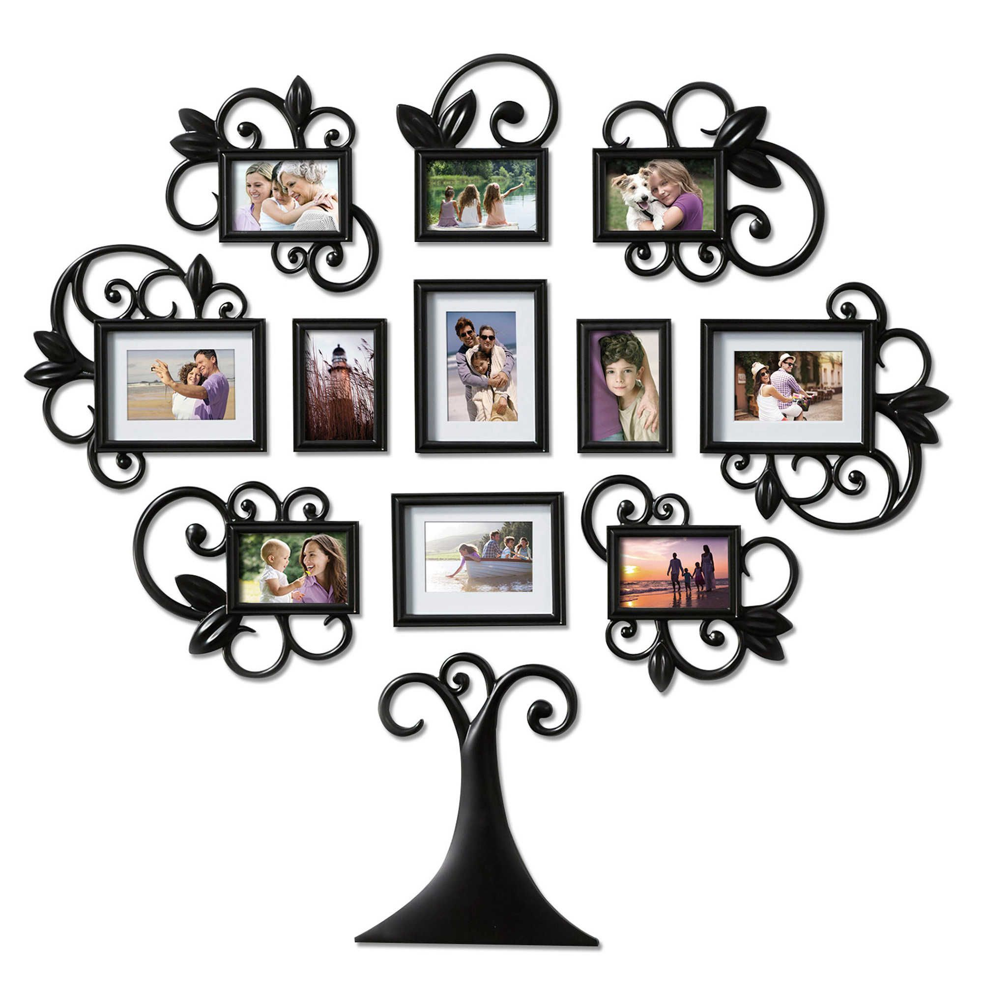 Wallverbs 12 Piece Scroll Tree Photo Frame Set In Black Family Tree Wall Art Family Tree Photo Frame Framed Photo Collage