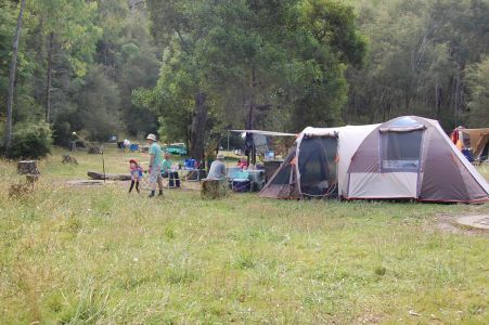 Parks Victoria Neds Gully Camping Area Camping areas