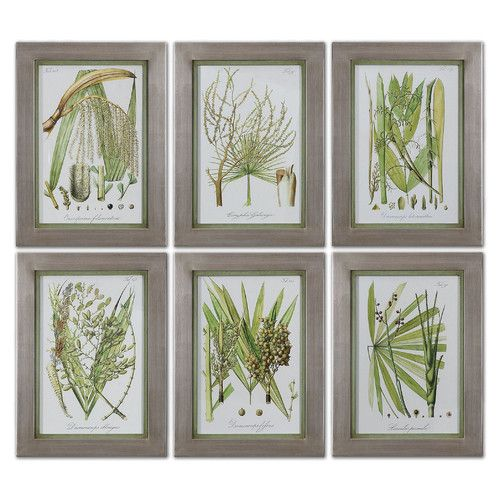 Uttermost Palm Seeds by Grace Feyock 6 Piece Framed Painting Print Set