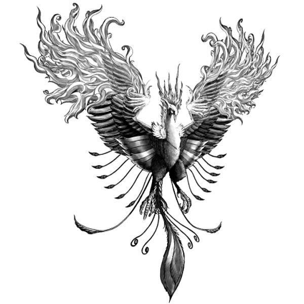 Wzór Tatuażu Feniks Tatoo
