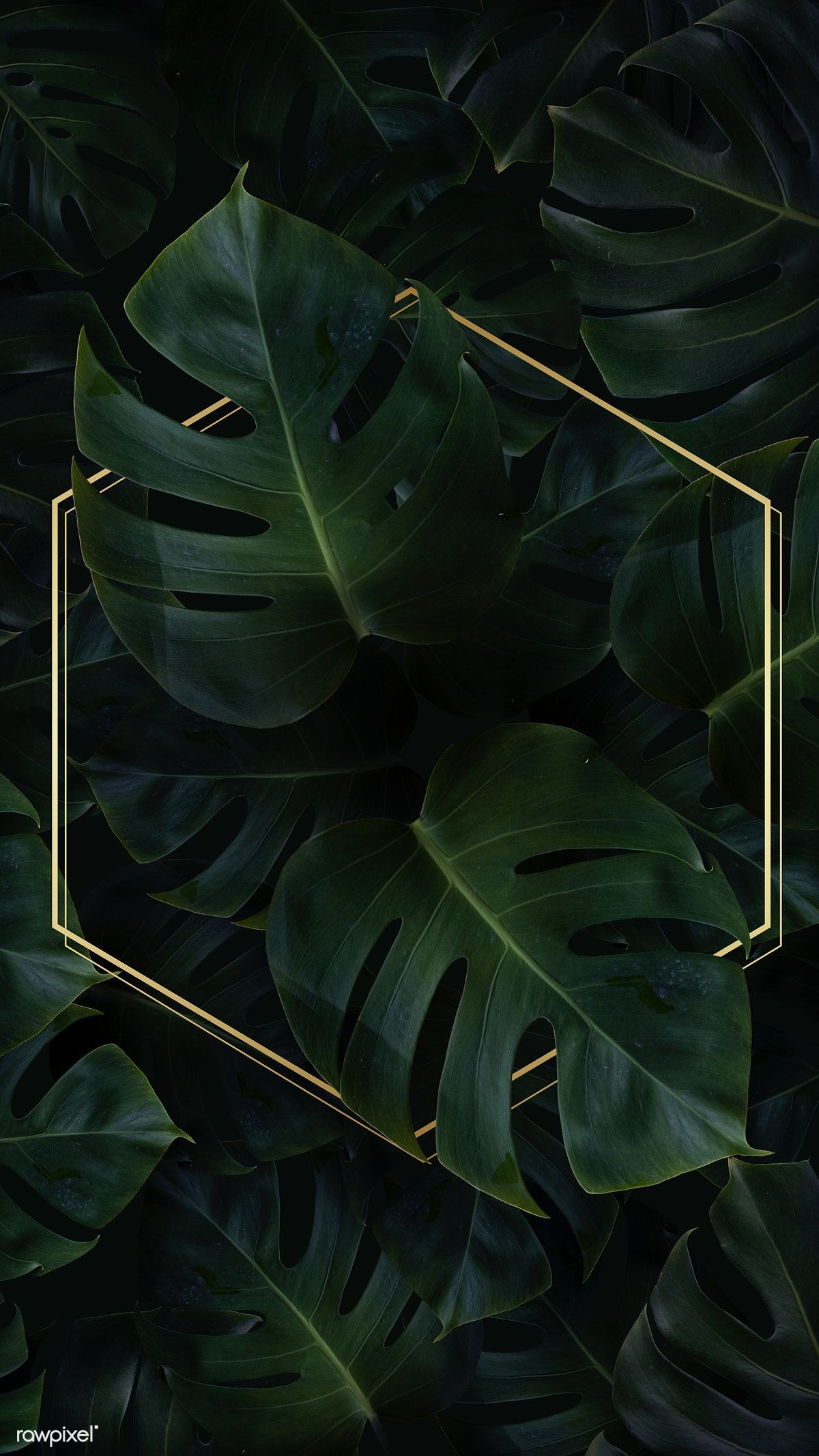 Download premium psd of Hexagon golden frame on a tropical