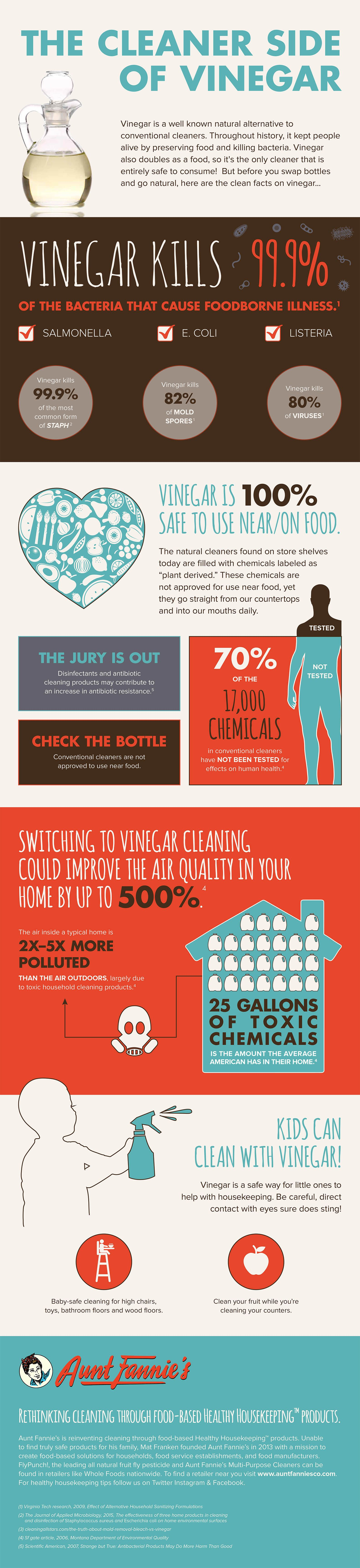 Infographic Why You Should Ditch The Cleaning Chemicals