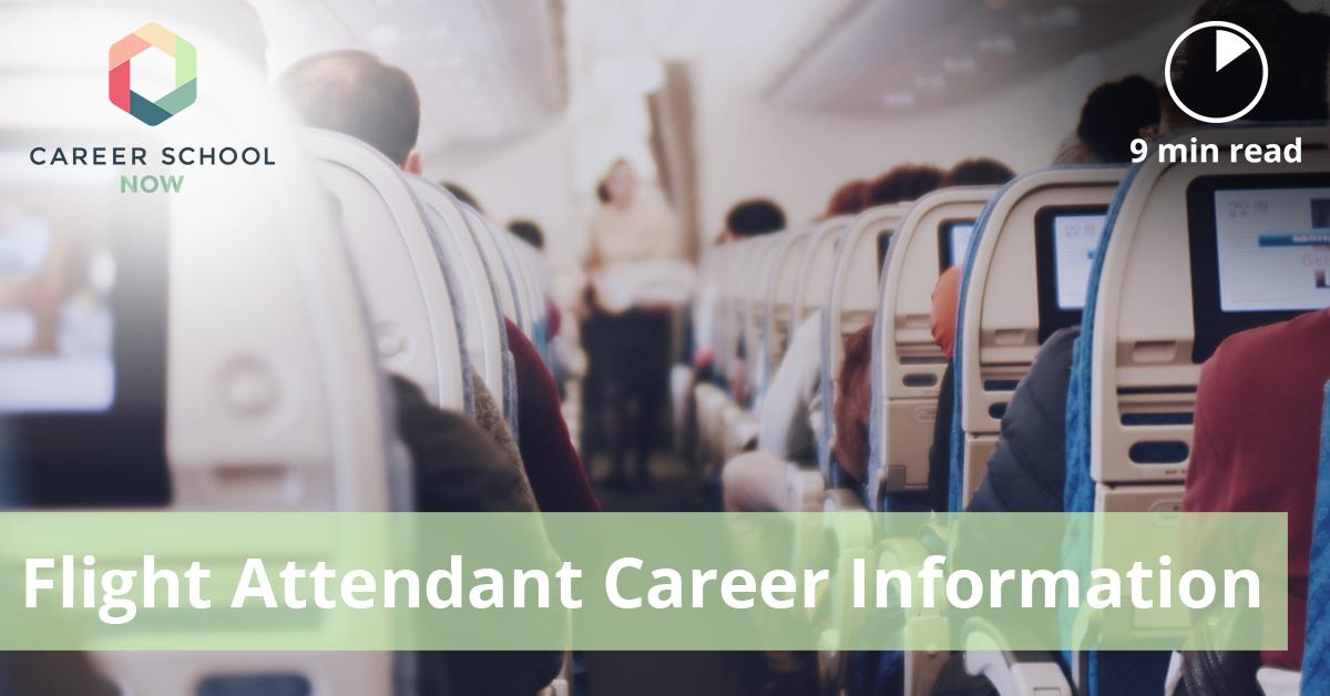 Flight Attendant Career Information