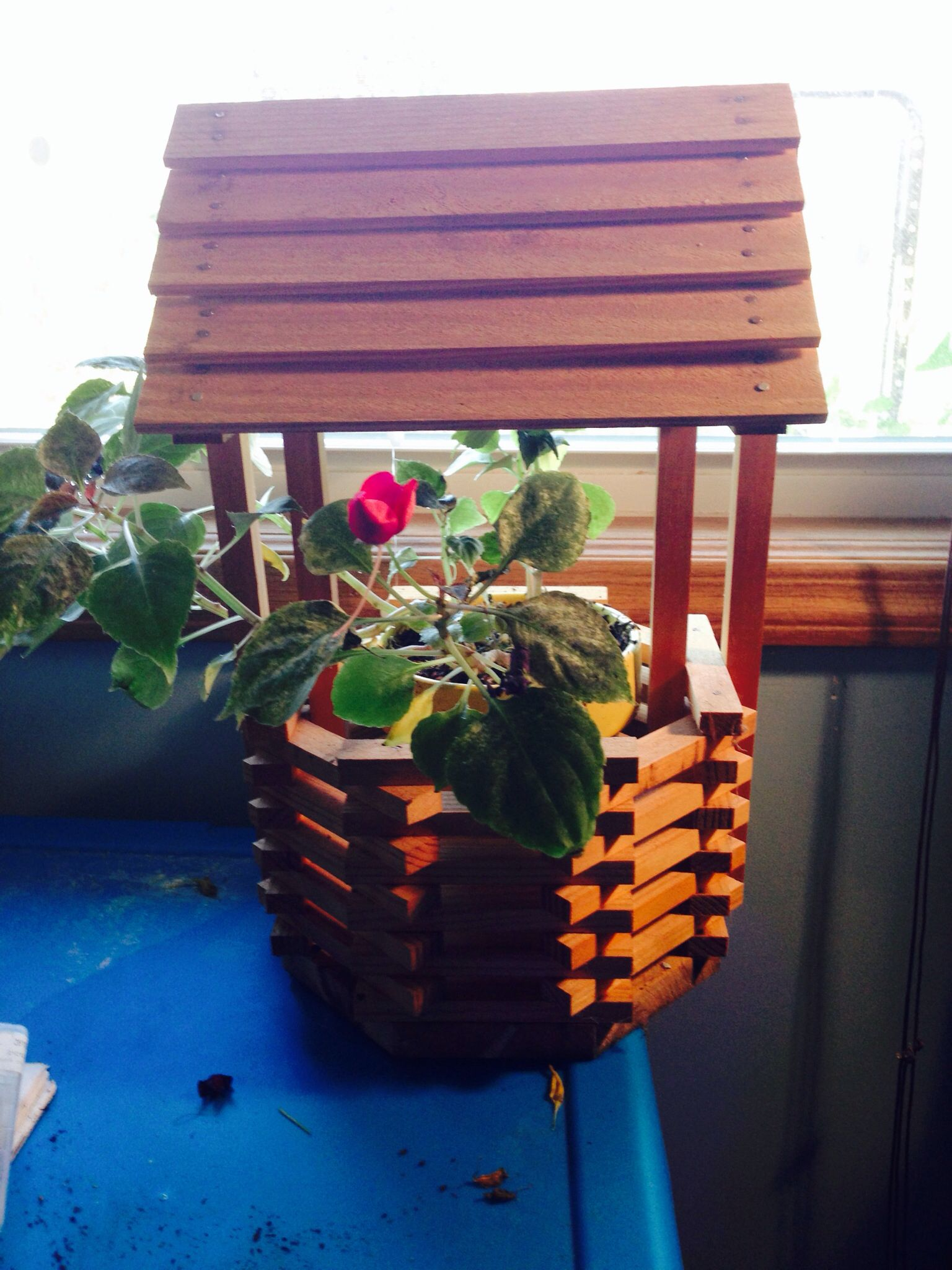 Pine Wishing Well for plants by EB!!