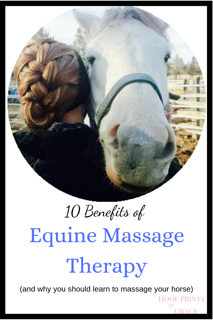 Equine Massage Therapy  Benefits