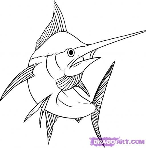 Sword Fish Line Drawing Google Search Drawings Animal Drawings Sea Creatures Drawing