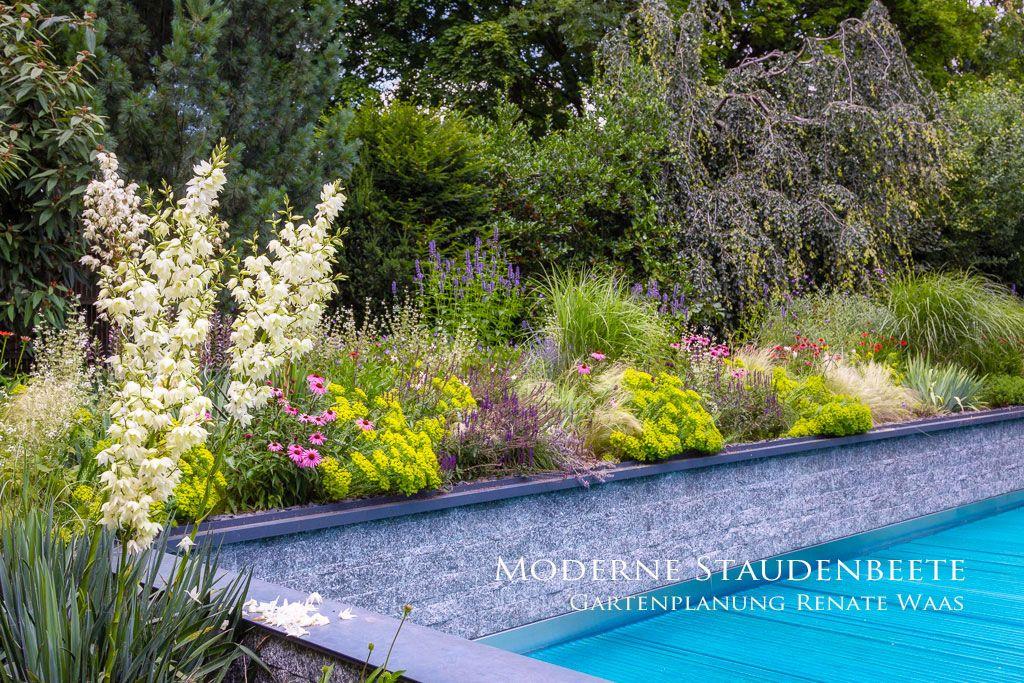 Moderne Garten Pflegeleicht Gestalten Garten Design Garten Moderner Garten