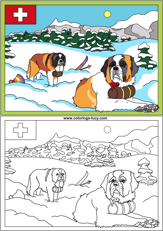 Saint bernard dogs | Colorings | Pinterest