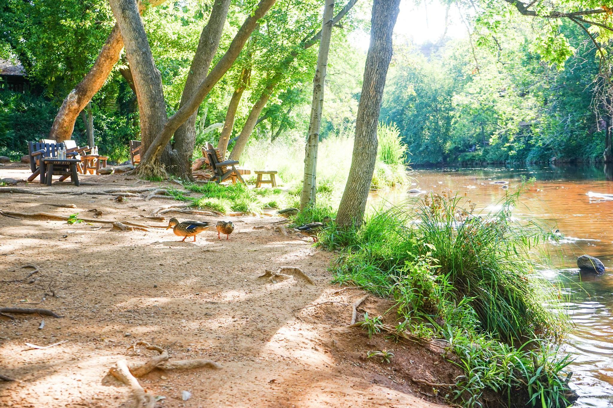 Happy trails. #lauberge #laubergedesedona #travel # ...
