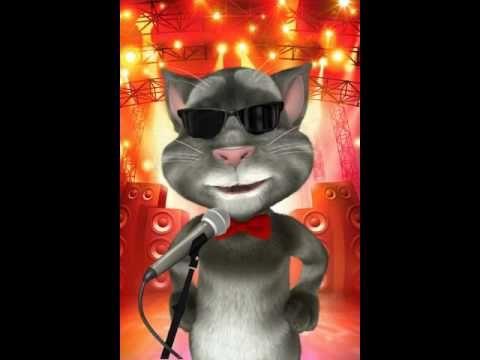 el gato tom sabe que parcerito  Videos Comicos  Pinterest