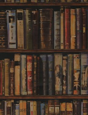 Library Wallpaper By Andrew Martin Rv Ideas Pinterest Book